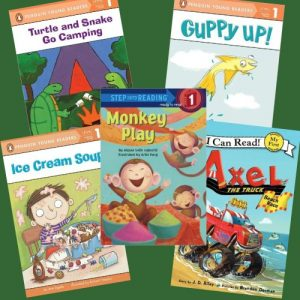 lilys-choice-c-d-leveled-book-set-6-1400992854-jpg