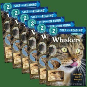 whiskersgroupset-jpg