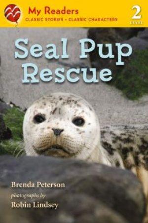 seal-pup-rescue-by-brenda-peterson-1432011315-jpg