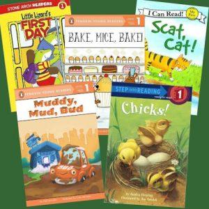 lilys-choice-c-d-leveled-book-set-5-1437192656-jpg