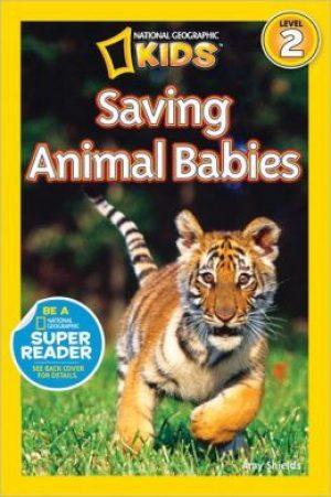 saving-animal-babies-by-amy-shields-1399181718-jpg