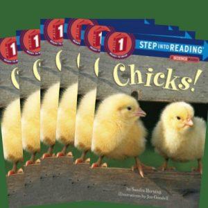 chicksgroupset-jpg