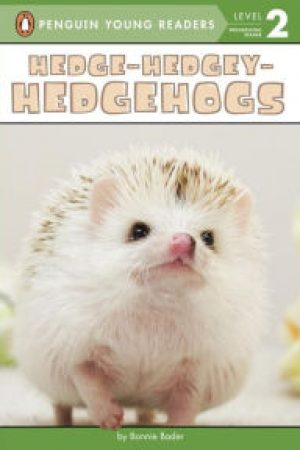 hedgehogs-jpg
