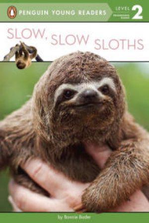 slowsloths-jpg