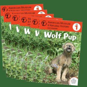 wolfpupgroupset-jpg