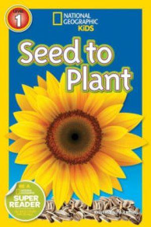 seedtoplant-jpg