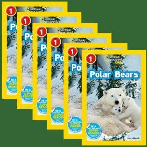 polarbearsgroupset-jpg