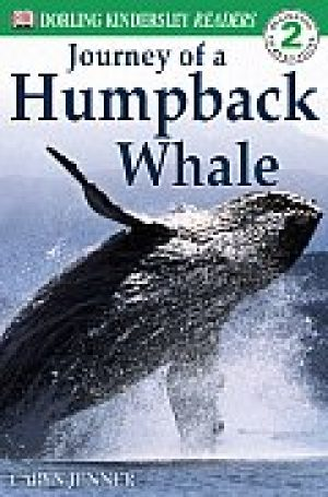 journey-of-a-humpback-whale-by-caryn-jenner-1358196606-jpg