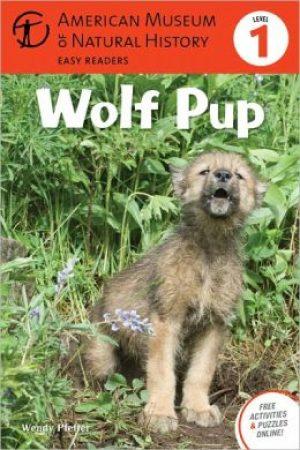 wolf-pup-by-wendy-pfeffer-1418178384-jpg