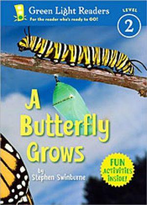 a-butterfly-grows-by-stephen-swinburne-1358456191-1-jpg